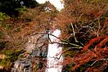 大阪府箕面市 箕面の大滝